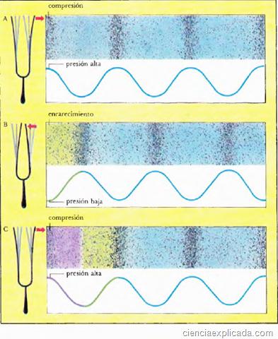 Ondas y Sonido - Ciencia Explicada