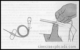 canula metalica