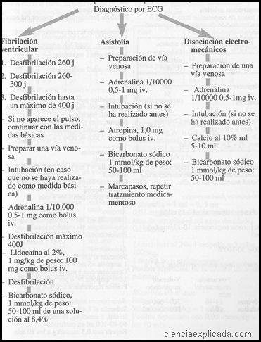 reanimacion- esquemas terapeuticos