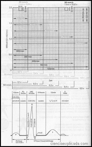 valores normales de ECG